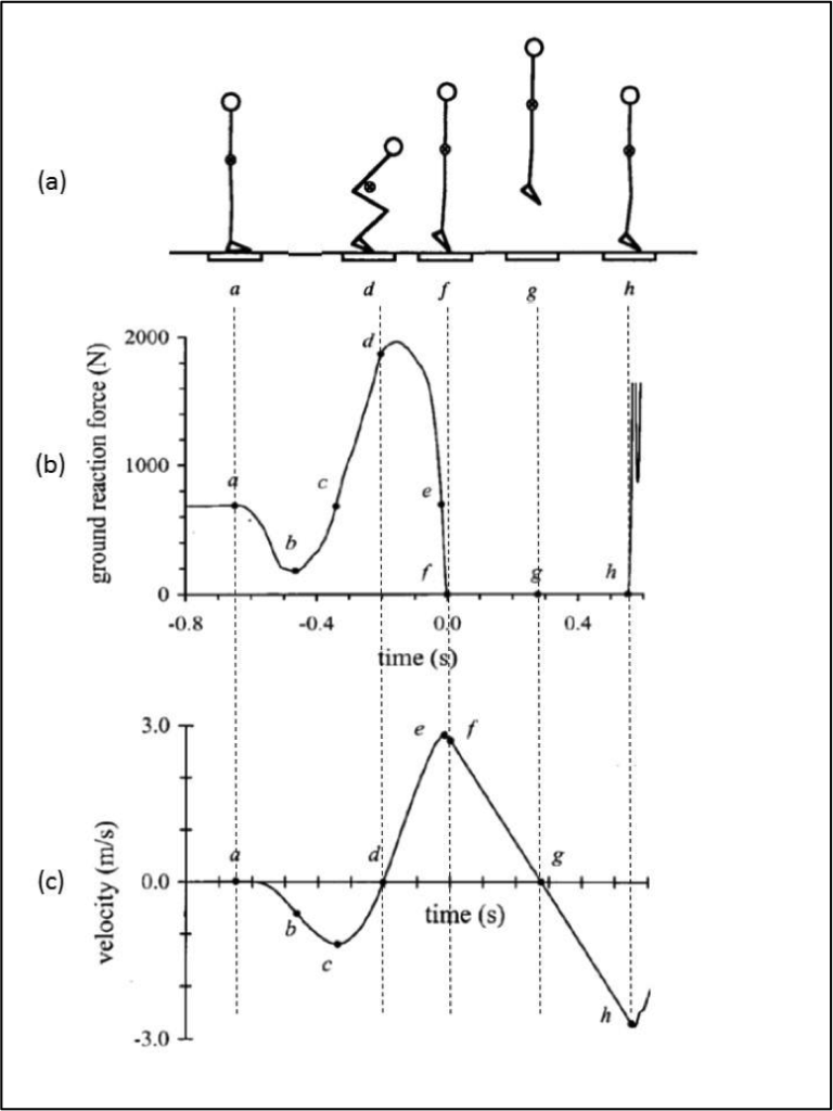 Text Box: Figure 1: A countermovement jump (CMJ) over time. 1(a) – sequence of actions; 1(b) – force vs time curve; 1(c) velocity vs time curve